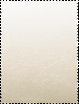 Leatherette Cream White