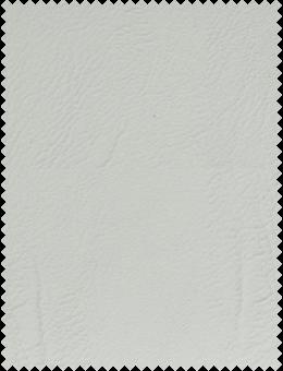 Vintage Leather White Dove